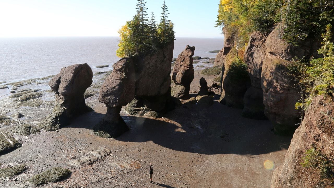 The tide recedes at the Hopewell Rocks.