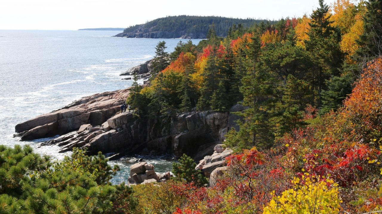 Acadia National Park's shoreline explodes with color in fall. Photo by Charles Williams