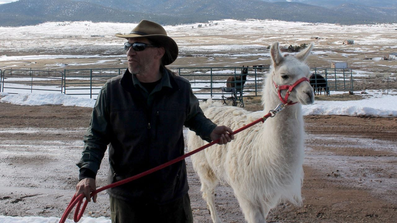 Stuart Wilde is the owner and wilderness guide behind Wild Earth Llama Adventures.