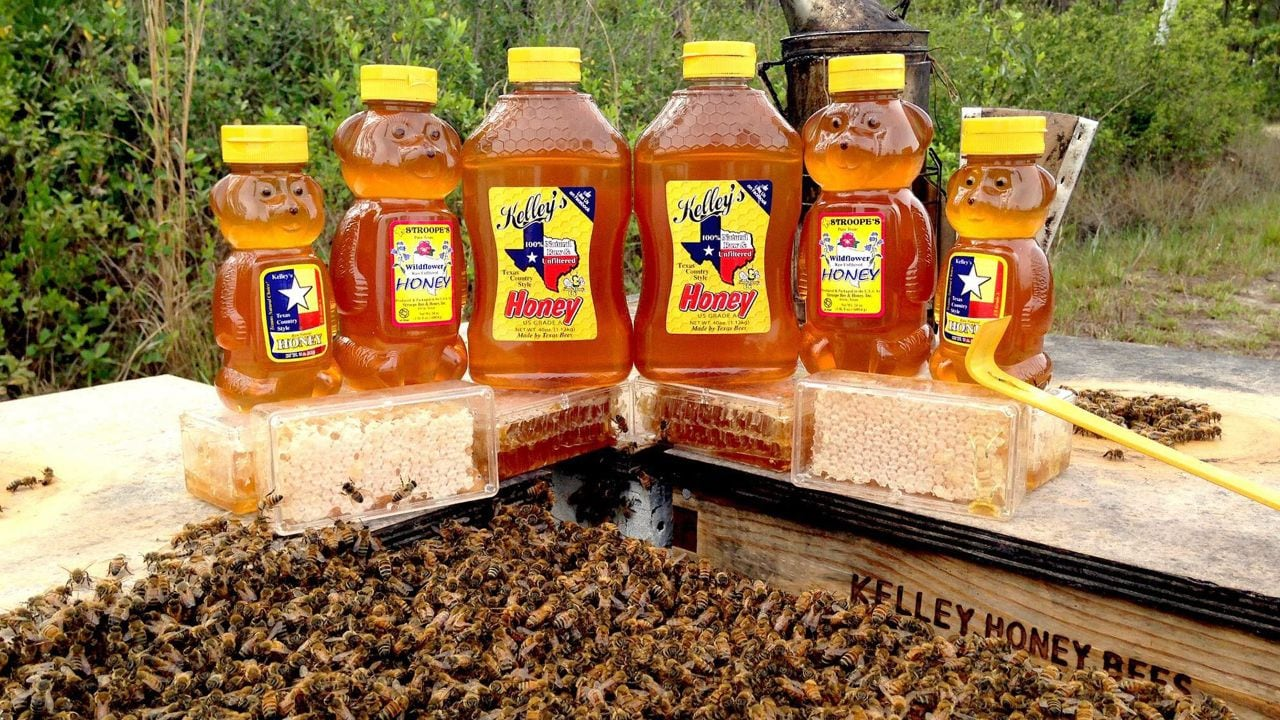 13 Spots to Learn about Beekeeping - Pursuits with