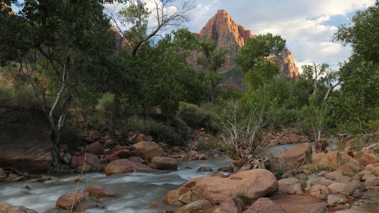 The Virgin River flows past the Watchman as the sun sets in Zion National Park.
